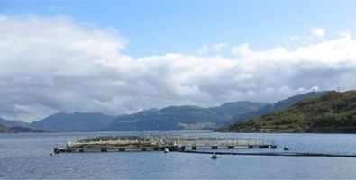 Scottish fish farm 395 x 200.jpg