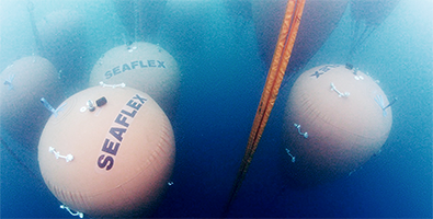 395x200Seaflex airbags thumbnail.png